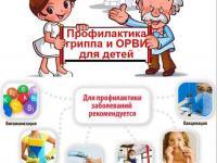 Информация по профилактике респираторных инфекций, гриппа и ОРВИ